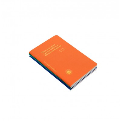 lot de 3 petits carnets de notes