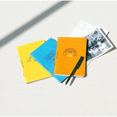LOT DE 3 PETITS CARNETS DE NOTES D