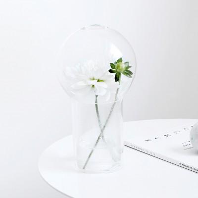 Vase Capsule