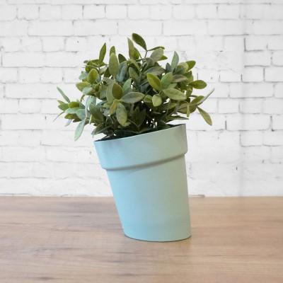Pot de fleurs pise