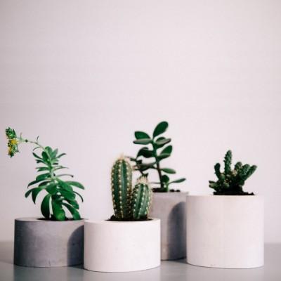 Set of 4 concrete planters