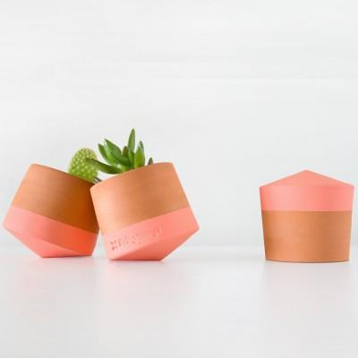 Petit Pot Toupie
