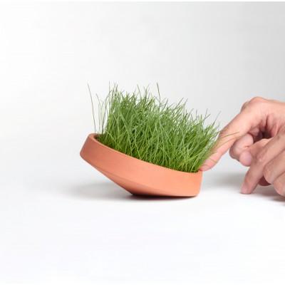 Micro Pot toupie