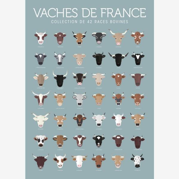 Affiche Vaches