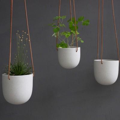 suspension végétale