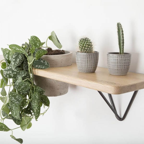 DIY Brut shelf